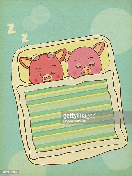 two pigs sleeping side by side - blanket stock illustrations, clip art, cartoons, & icons