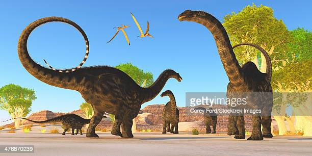 Two pterosaurs fly over a herd of Apatosaurus dinosaurs as they wander through a prehistoric forest.