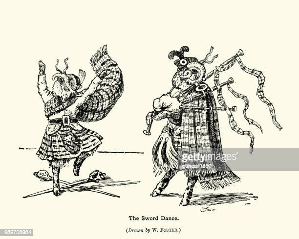 two scottish sheep doing the sword dance to the bagpipe - scottish culture stock illustrations