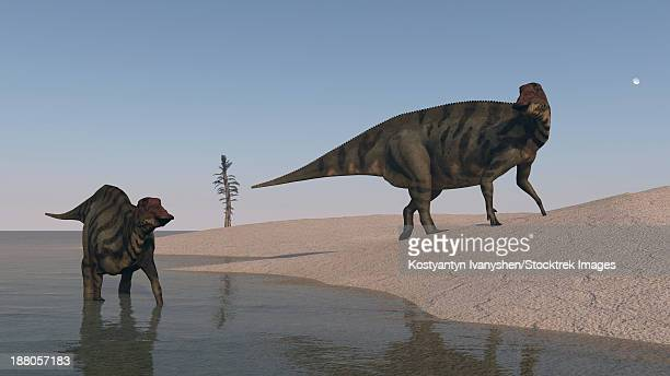 Two Shuangmiaosaurus dinosaurs on the shoreline.