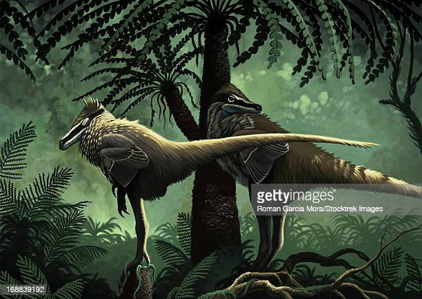 Two Variraptor mechinorum rest in the shadow of a cycad in the Campanian (Late Cretaceous) of Europe.