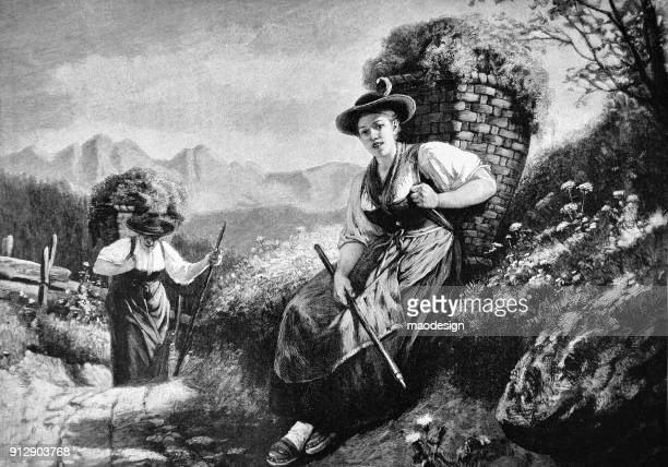 two women collect herbs on a mountain slope - 1896 - 1896 stock illustrations, clip art, cartoons, & icons