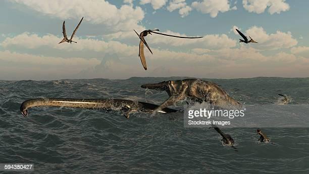 Tylosaurus attacks a Styxosaurus in Cetaceous waters.