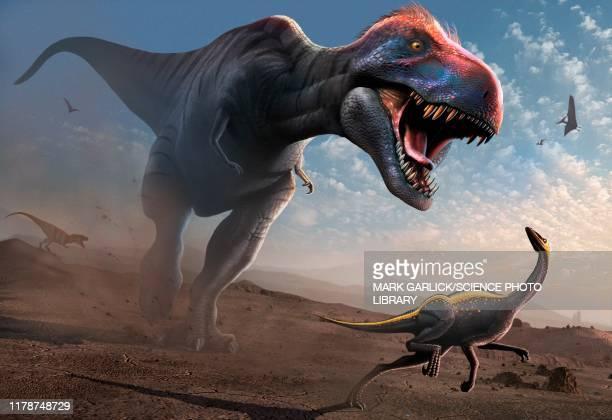 ilustraciones, imágenes clip art, dibujos animados e iconos de stock de tyrannosaur chasing an ornithomimus, illustration - animal extinto