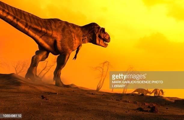 ilustraciones, imágenes clip art, dibujos animados e iconos de stock de tyrannosaurus chasing triceratops, illustration - animal extinto