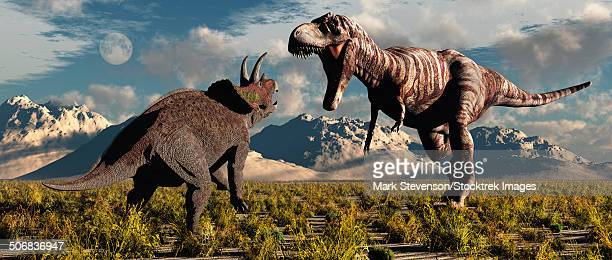 Tyrannosaurus Rex and Triceratops involved in a battle to the death during Earth's Cretaceous Period of time.