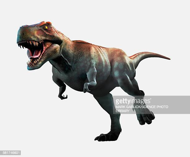ilustrações, clipart, desenhos animados e ícones de tyrannosaurus rex artwork - era prehistórica