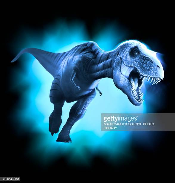 tyrannosaurus rex artwork - scavenging stock illustrations
