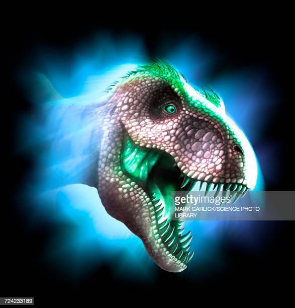 tyrannosaurus rex artwork - animal teeth stock illustrations