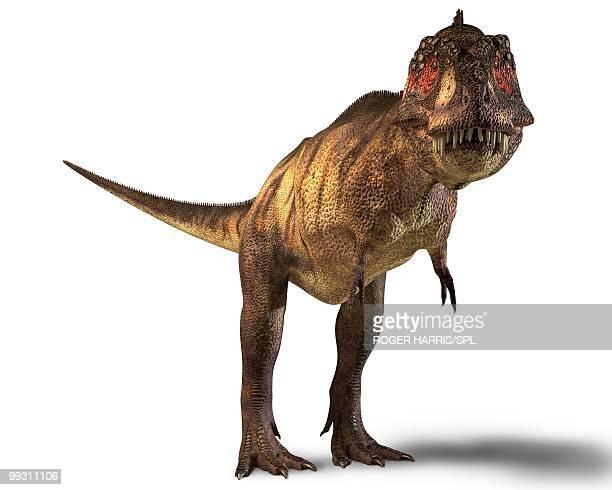 tyrannosaurus rex dinosaur - looking at camera stock illustrations