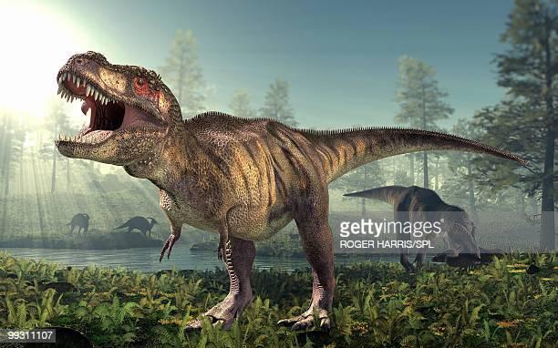 ilustraciones, imágenes clip art, dibujos animados e iconos de stock de tyrannosaurus rex dinosaur - animal extinto
