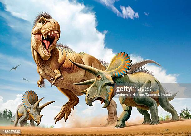 Tyrannosaurus Rex fighting with two Triceratops while trying to hunt them.