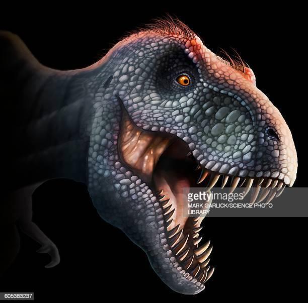 ilustraciones, imágenes clip art, dibujos animados e iconos de stock de tyrannosaurus rex head, illustration - animal extinto