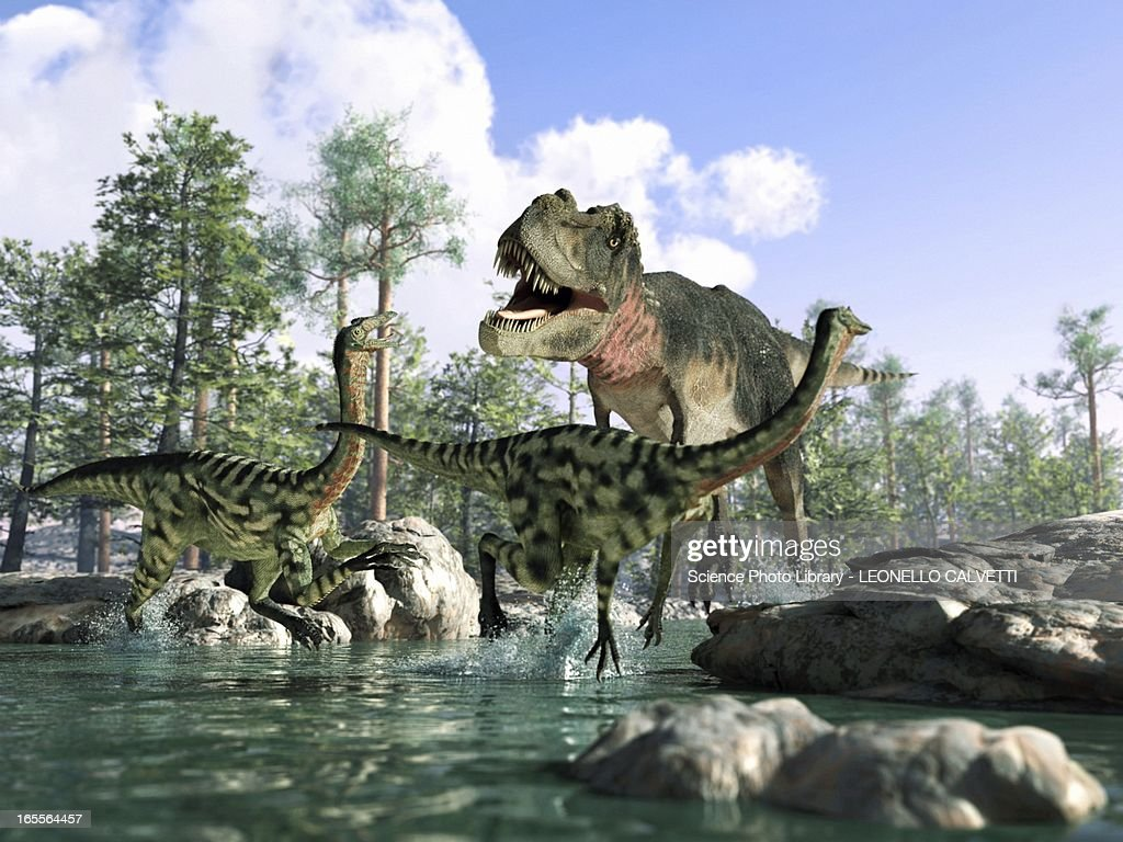 Tyrannosaurus rex hunting, artwork : stock illustration