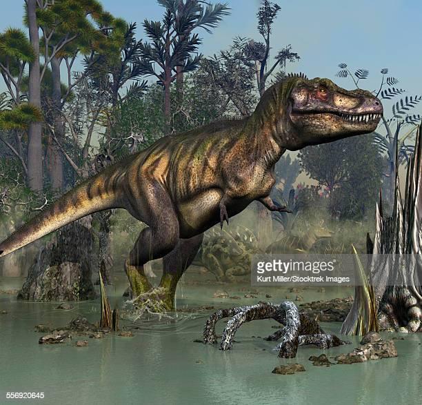 tyrannosaurus rex smelling a few gigantspinosaurus and a corythosaurus in the near distance of the swamp. - corythosaurus casuarius stock illustrations, clip art, cartoons, & icons