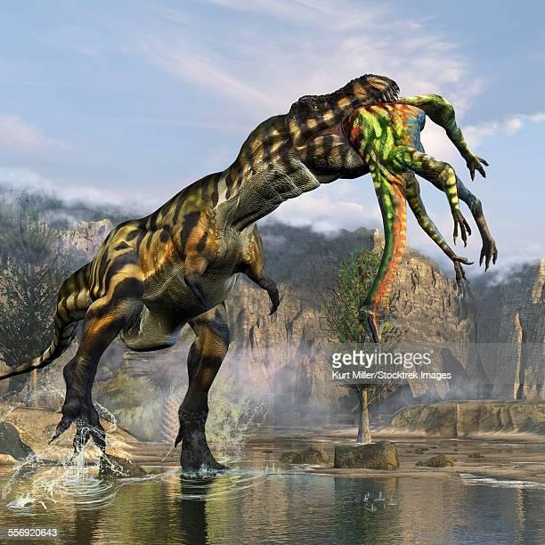 ilustraciones, imágenes clip art, dibujos animados e iconos de stock de tyrannosaurus rex with a freshly killed deinocheirus in its mouth. - paleobiología