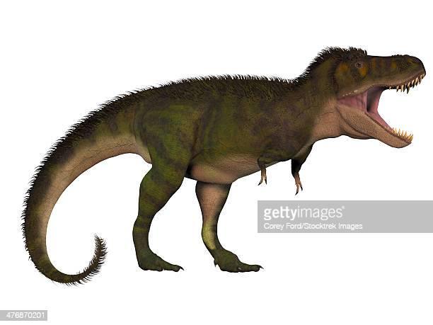 ilustraciones, imágenes clip art, dibujos animados e iconos de stock de tyranosaurus rex, a large carnivore of the cretaceous period in north america. - triásico