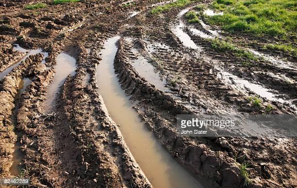tyre rutts in mud - schlamm stock-grafiken, -clipart, -cartoons und -symbole