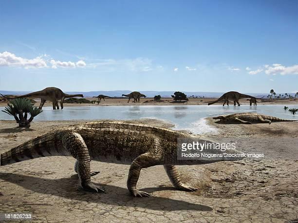 ilustraciones, imágenes clip art, dibujos animados e iconos de stock de uberabasuchus terrificus in an arid climate. - paleozoología
