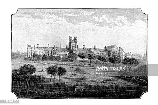 university of sydney ,19th century - university of sydney stock illustrations