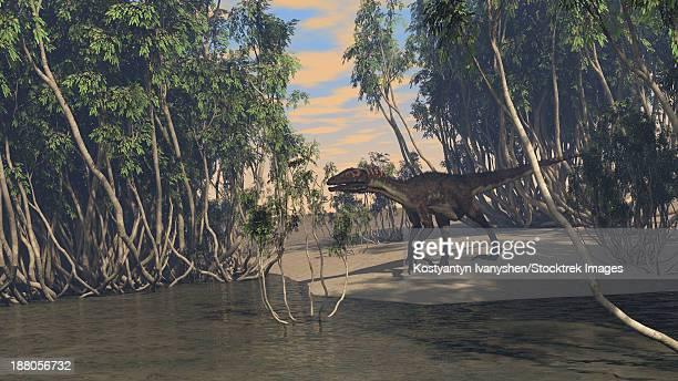 utahraptor roaming prehistoric wetlands. - dromaeosauridae stock illustrations