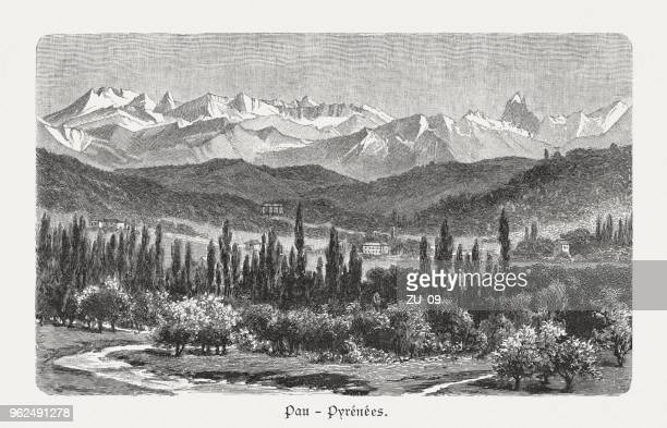 valley of pau, pyrenees, france, wood engraving, published in 1897 - midi pyrénées stock illustrations, clip art, cartoons, & icons