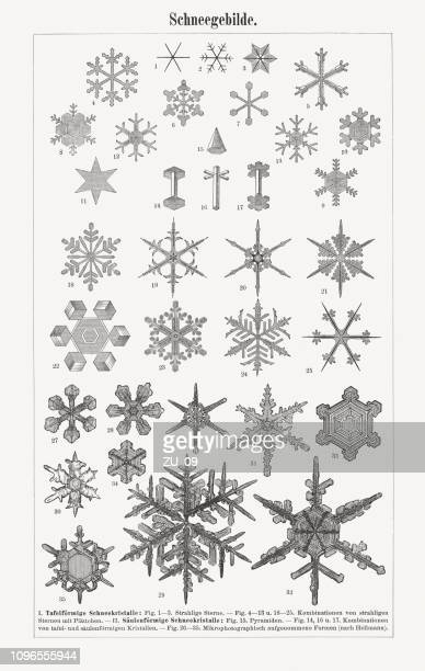 various shapes of snowflakes, wood engravings, published in 1897 - filigree stock illustrations
