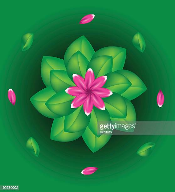 vector flower - plant stage stock illustrations, clip art, cartoons, & icons