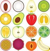 Vector illustration of fruits cut in half