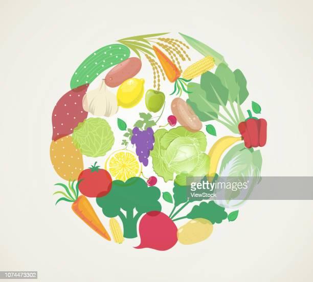 vegetables illustrations - bok choy stock illustrations, clip art, cartoons, & icons