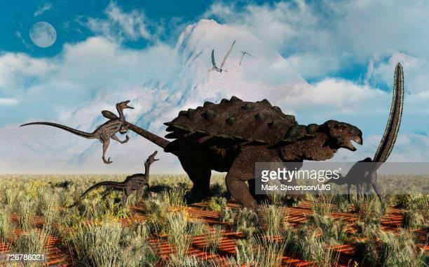 velocerators attacking heavily armored pinacosaurus - thyreophora stock illustrations, clip art, cartoons, & icons