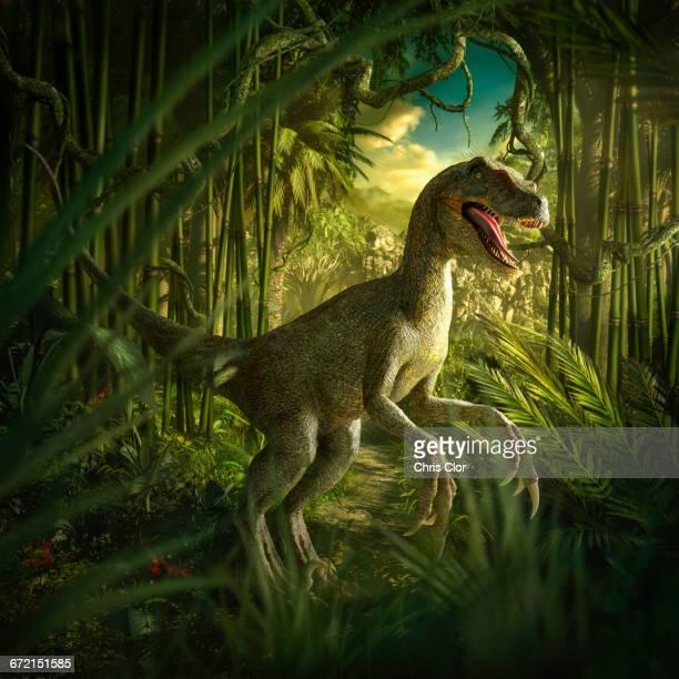 velociraptor dinosaur in lush green jungle - dromaeosauridae stock illustrations