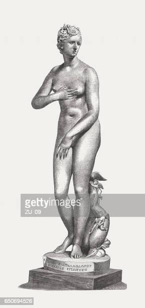 ilustraciones, imágenes clip art, dibujos animados e iconos de stock de de venus' médici (siglo i aec), galería de los uffizi, florencia, italia - roman goddess