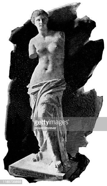 bildbanksillustrationer, clip art samt tecknat material och ikoner med venus de milo staty av alexandros av antioch-2: a århundradet f.kr. - grekisk gudinna