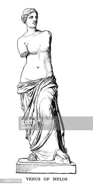venus of melos - greek statue stock illustrations