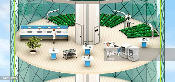 verticalfarm_lablevel - female likeness stock illustrations