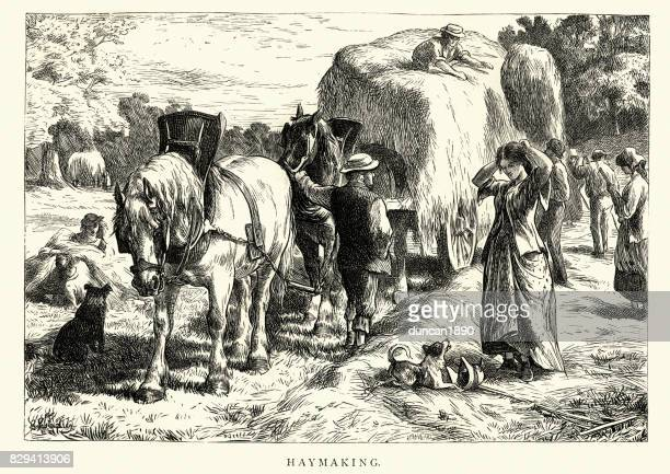 Victorian agricultural labourers haymaking on a farm