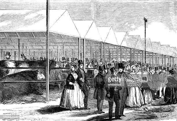victorian agricultural show - 1840 1849 stock illustrations