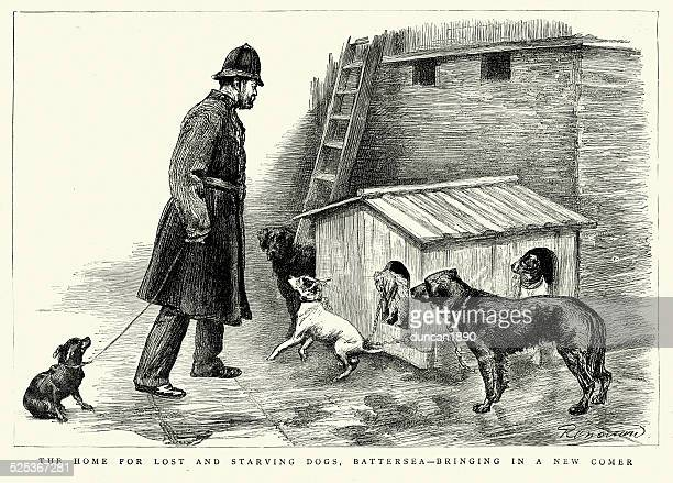 Victorian Battersea Dogs Home