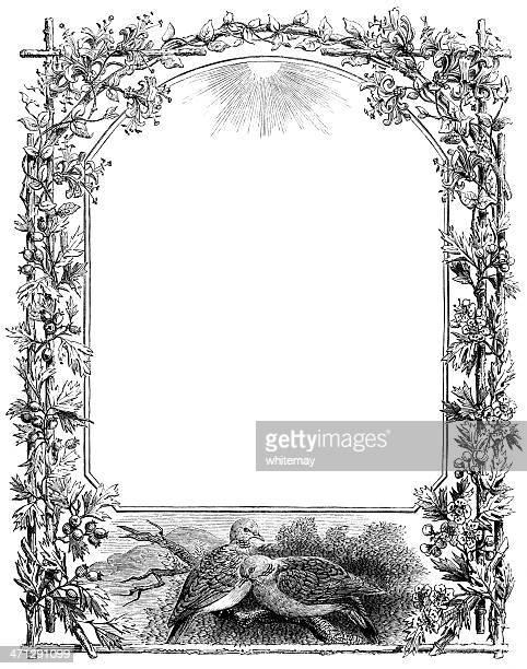 ilustrações, clipart, desenhos animados e ícones de borda vitoriana com vinhas e de pombos - pilritreiro