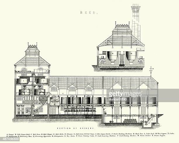 victorian brewery, cross section, late 19th century - distillation stock illustrations, clip art, cartoons, & icons
