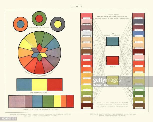 victorian colour chart diagram - hair color stock illustrations, clip art, cartoons, & icons