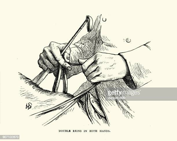Bridle stock illustrations and cartoons getty images victorian diagram of holding double reins in both hands ccuart Gallery