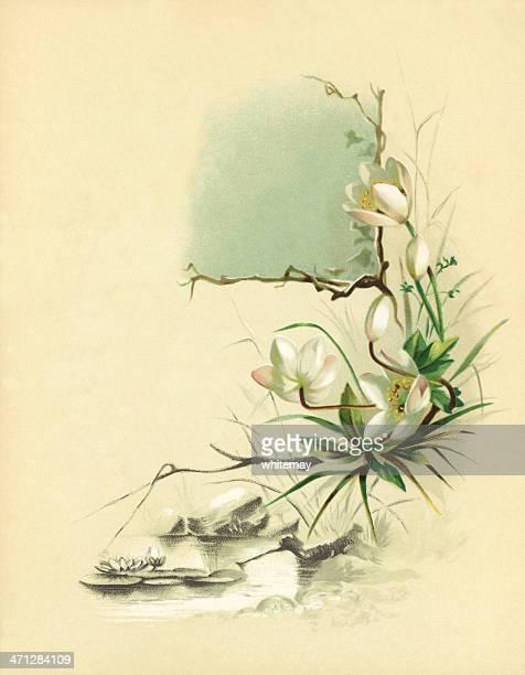 illustrations, cliparts, dessins animés et icônes de illustration de style victorien avec fleurs roses waterlilies et de noël - bottes bigarrées