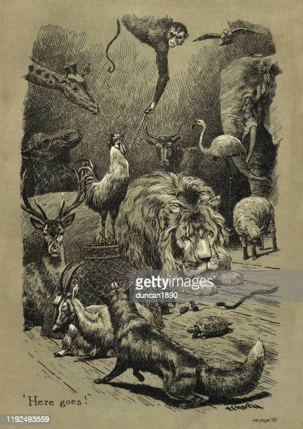 victorian hunters trophy room with stuffed animals - dead dog stock illustrations