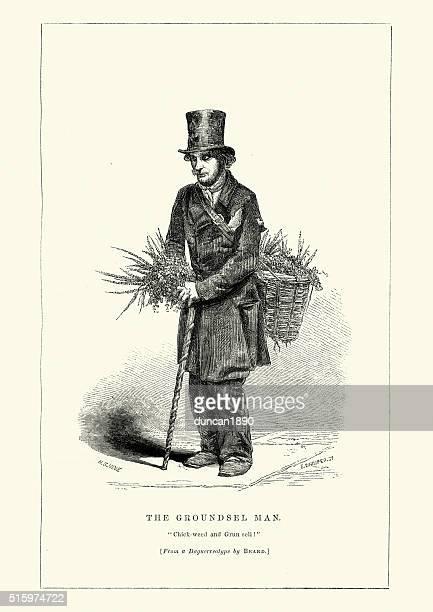 ilustrações, clipart, desenhos animados e ícones de vitoriana londres-o homem tasneira - chickweed