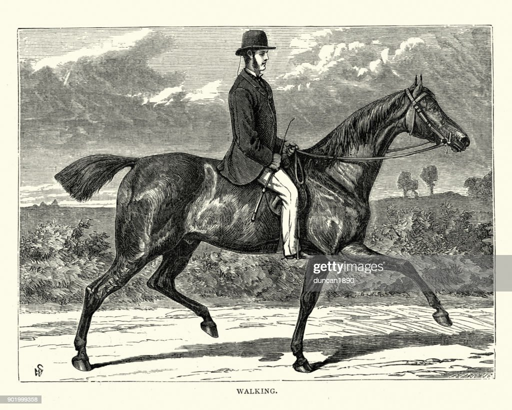 Victorian Man Riding A Horse High Res Vector Graphic Getty Images