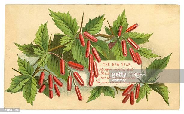 ilustrações, clipart, desenhos animados e ícones de victorian cartão de ano novo, 1881 - pilritreiro