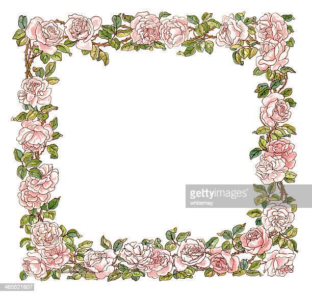 bildbanksillustrationer, clip art samt tecknat material och ikoner med victorian pink rose border - taggig buske
