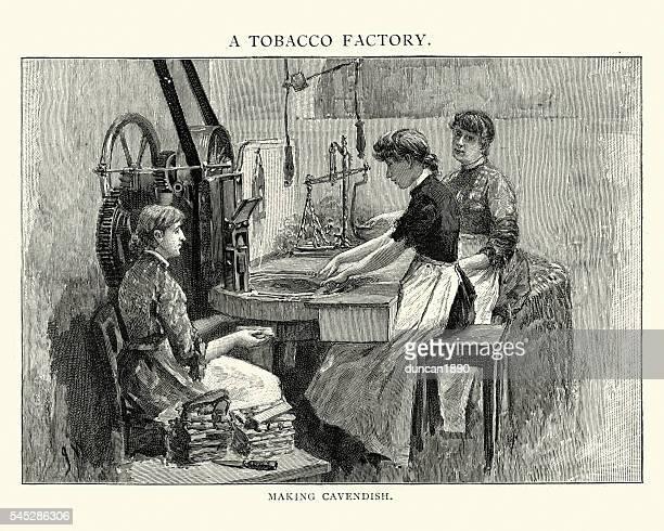 victorian tobacco factory women making cavendish - tobacco crop stock illustrations, clip art, cartoons, & icons